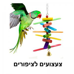 צעצועים לציפורים