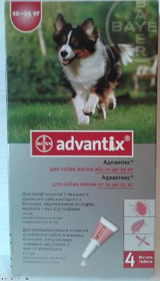 """ביאו פראש לכלב שמפו לטיפוח  250 מ""""ל bio fresh"""