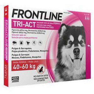 אמפולות לטיפול ומניעת קרציות וכינים לכלב 40-60 קג FRONTLINE