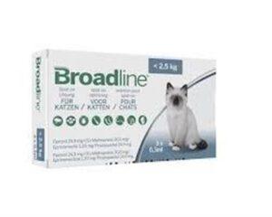 "broadline ברודליין אמפולות לחתולים פחות מ-2.5 ק""ג"